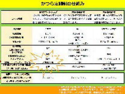 月々1万円(税抜)から